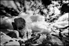 Belly of the Whale | Joshua Tree National Park